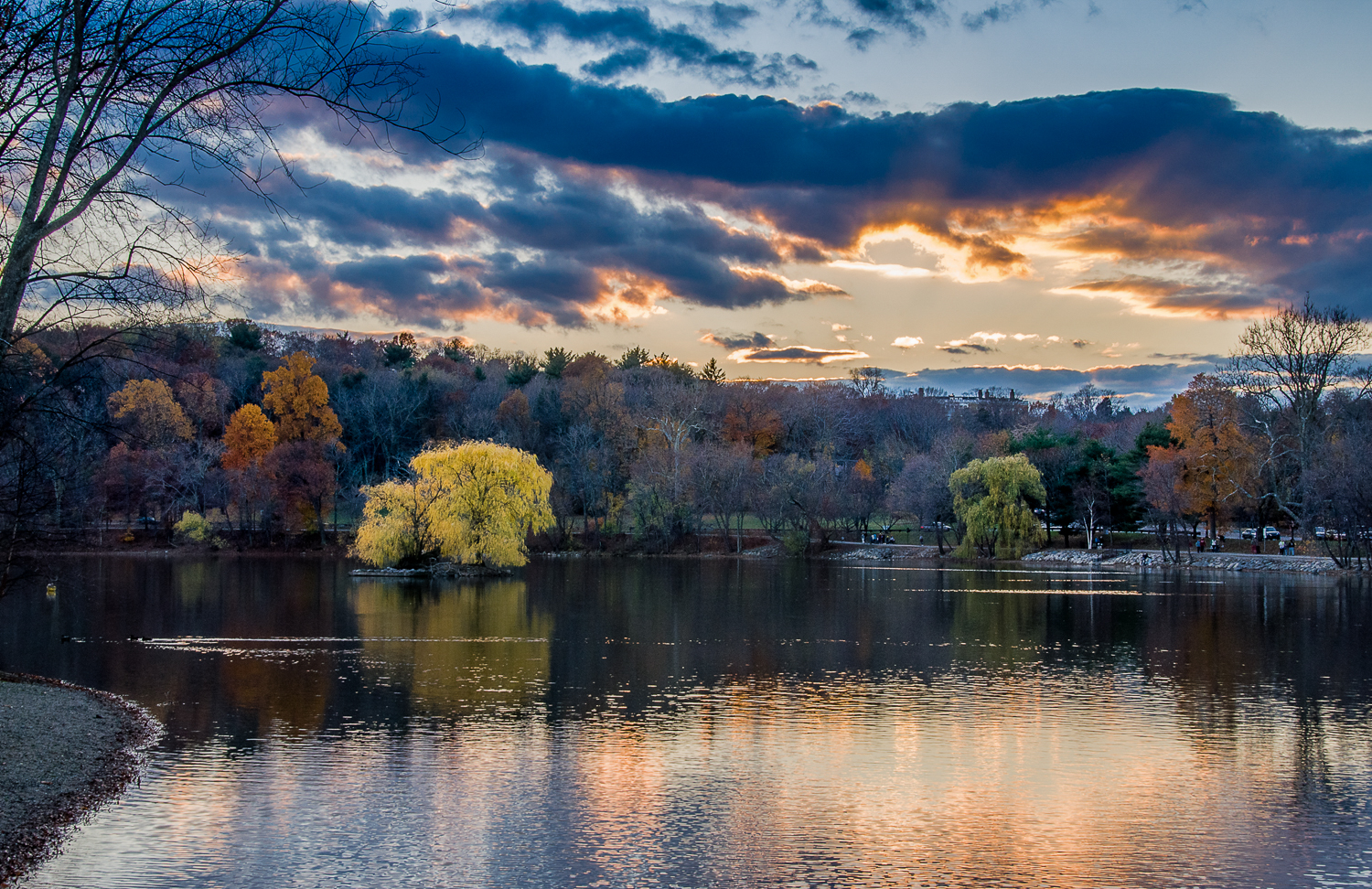 Jamaica Pond island at sunset